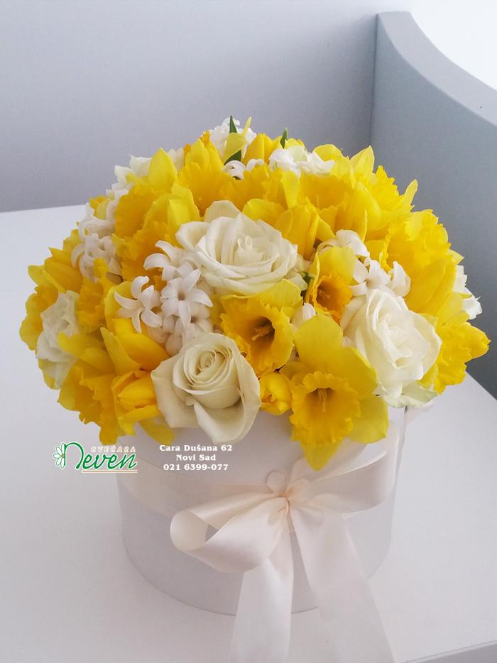 Flower box sa ružama, narcisima i zumbulom.