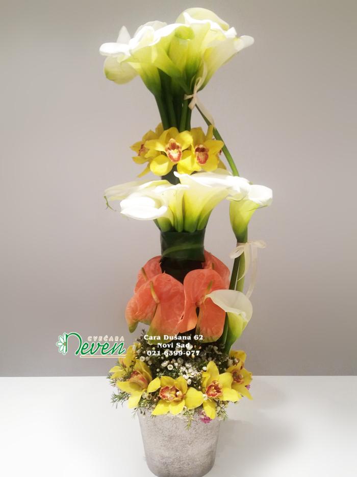 Aranžman sa kalama , anturijumima i orhidejama