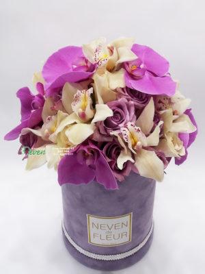 Plišani Flowerbox sa ružama i orhedijama