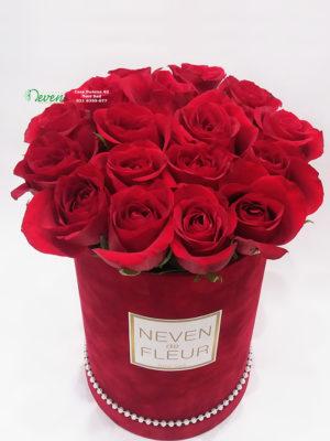 Plišani flowerbox sa crvenim ružama.