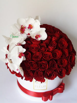101 crvena ruža i orhideja ''Phalaenopsis''