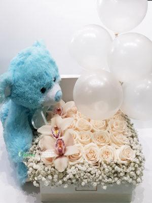 Plišani meda sa ružama i balonima za rođenje dečaka