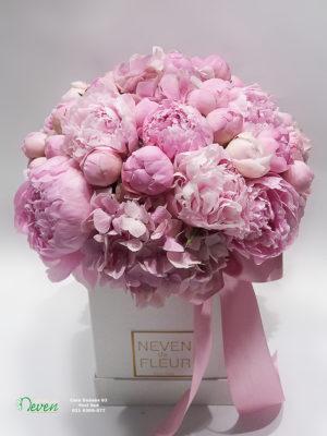 Flower box sa Božurima.