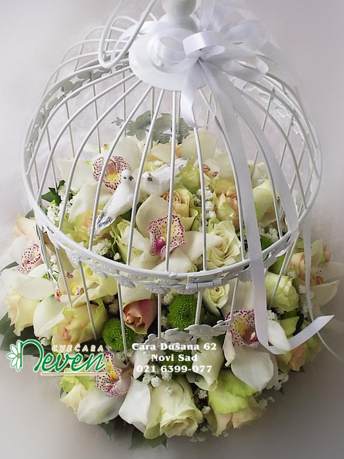 Kavez sa ružama, margaretama i ptičicama