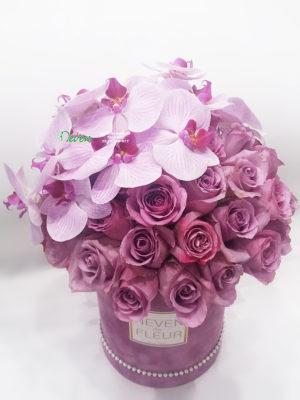Flowerbox sa lila ružama i orhidejom ''Phalaenopsis''